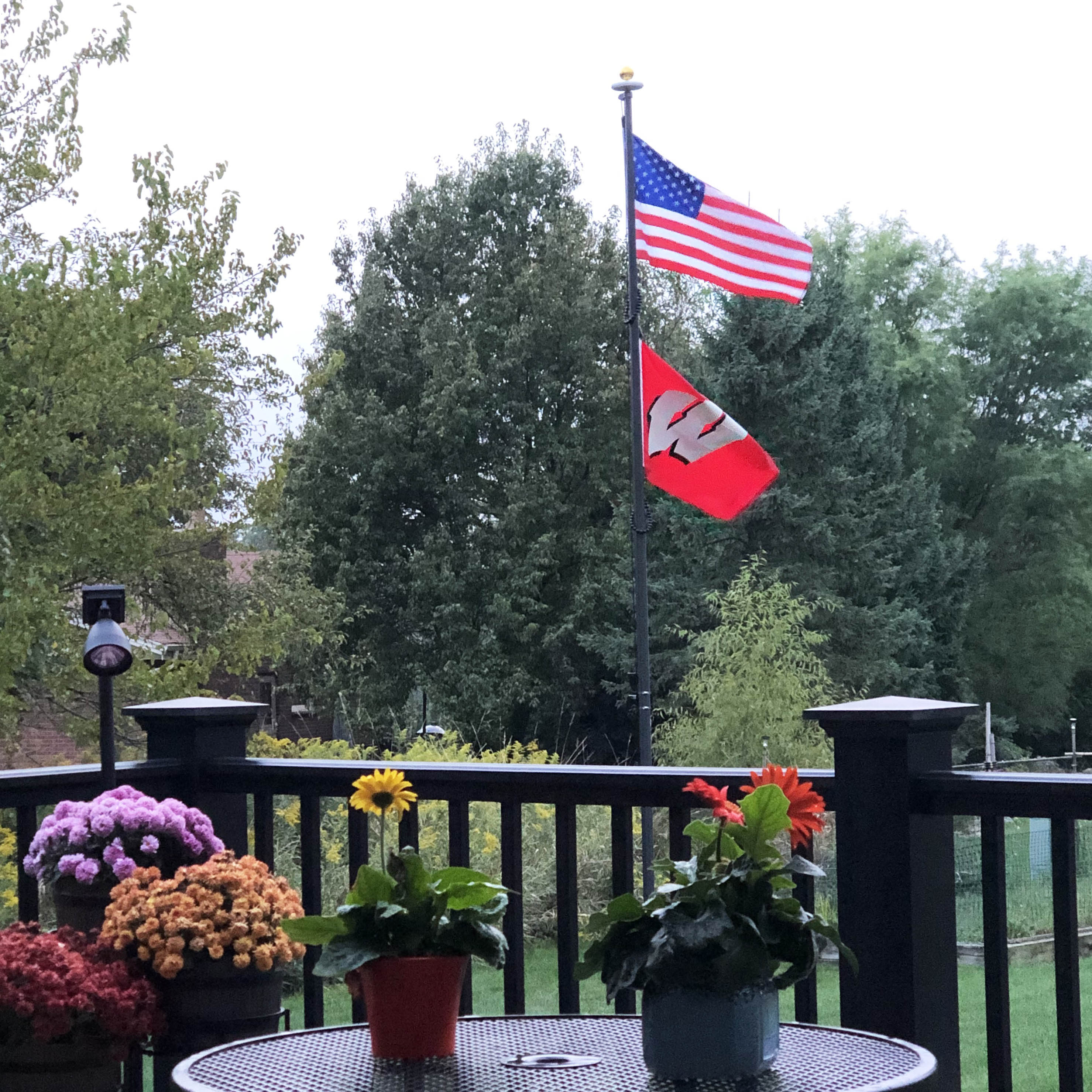 20' Black External Halyard Flagpole