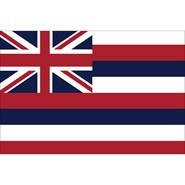 4x6in Mounted Hawaii Flag
