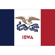 4x6in Mounted Iowa Flag