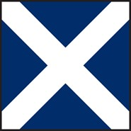 M Mike Code Flag