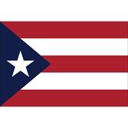 Puerto Rico Nylon Flag