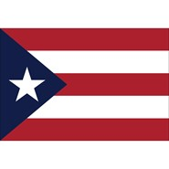 Puerto Rico Polyester Flag