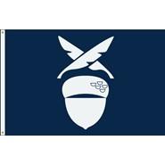 Financial Secretary Flag