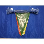100' String Pennant Multi Color 4 Mil