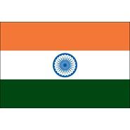 India Nylon Flag