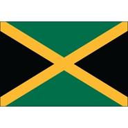 Jamacia Nylon Flag