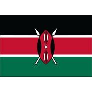 Kenya Nylon Flag