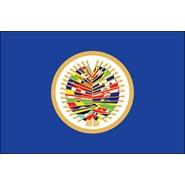 OAS Nylon Flag