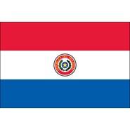 Paraguay Nylon Flag