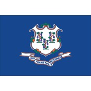 Connecticut State Polyester Flag