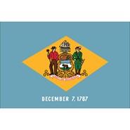 Delaware State Polyester Flag